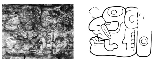 Figure 5. The Stingray Paddler on Tikal Temple VI (C19): a) Photograph by Gordon Echols; b) Drawing by the author.