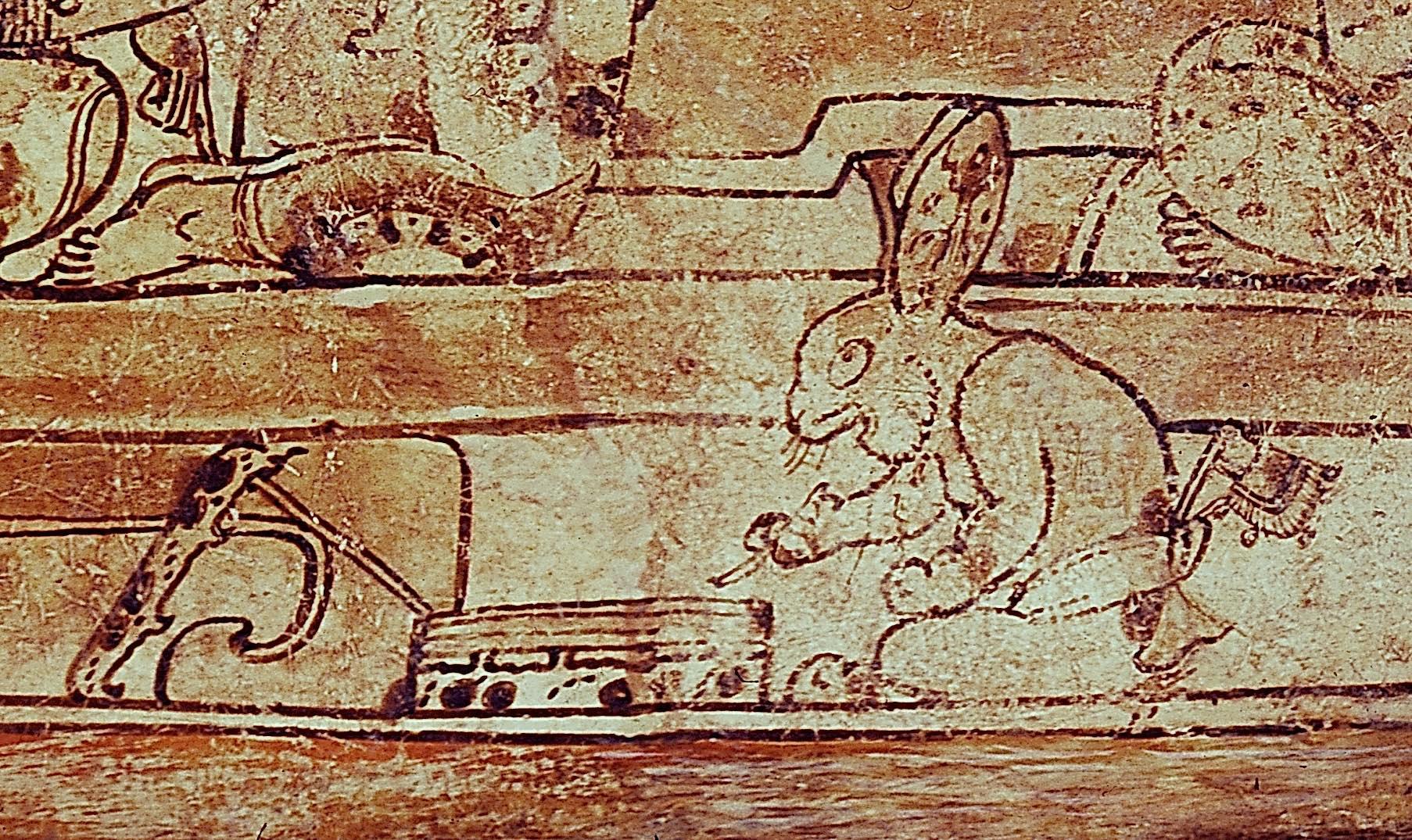 0511_rabbit.jpg